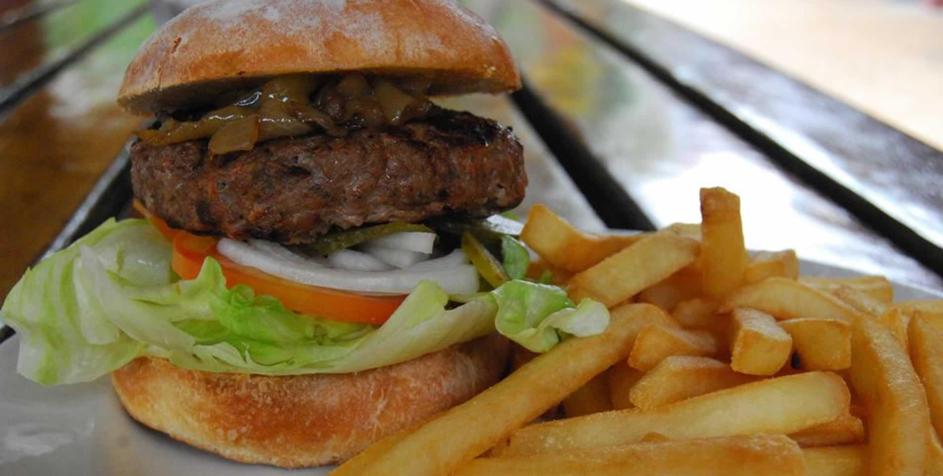 johannes-burger